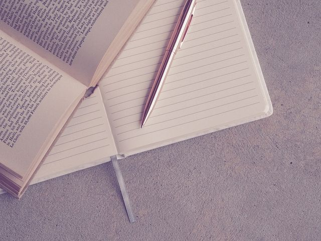 how to write a diary, diary writing examples.